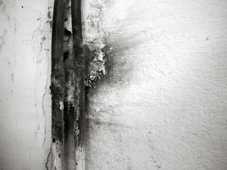 Une photo en noir et blanc qui joue sur le contraste des deux couleurs et des matières