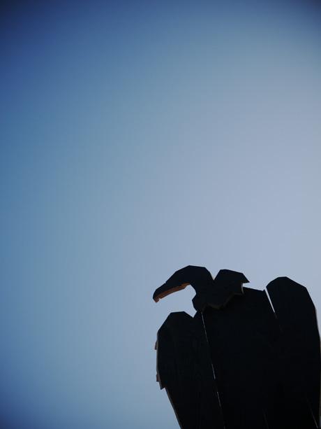 Un vautour sur les toits des tablées de pic ninc