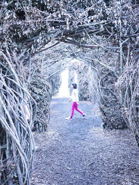 Exploration du labyrinthe végétal par une enfant - Exposition 56 chandelles